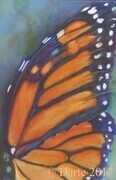 monarch wings